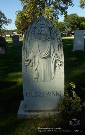OLSZEWSKI, APOLINARY - Lucas County, Ohio | APOLINARY OLSZEWSKI - Ohio Gravestone Photos