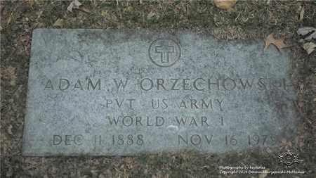 ORZECHOWSKI, ADAM W. - Lucas County, Ohio | ADAM W. ORZECHOWSKI - Ohio Gravestone Photos