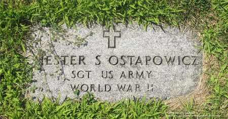 OSTAPOWICZ, CHESTER S. - Lucas County, Ohio | CHESTER S. OSTAPOWICZ - Ohio Gravestone Photos