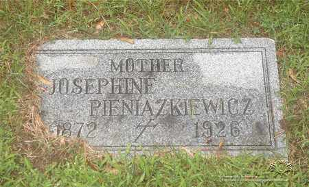 TOMASZEWSKI PIENIAZKIEWICZ, JOSEPHINE - Lucas County, Ohio | JOSEPHINE TOMASZEWSKI PIENIAZKIEWICZ - Ohio Gravestone Photos