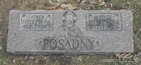WISNIEWSKI POSADNY, JOSEPHINE - Lucas County, Ohio | JOSEPHINE WISNIEWSKI POSADNY - Ohio Gravestone Photos