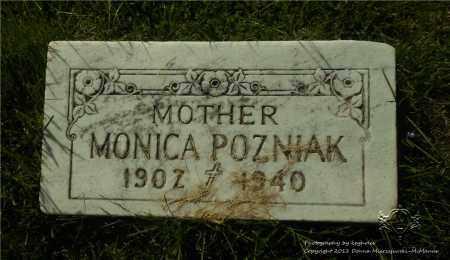 POZNIAK, MONICA - Lucas County, Ohio | MONICA POZNIAK - Ohio Gravestone Photos
