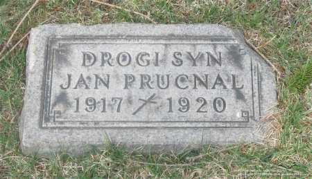 PRUCNAL, JAN - Lucas County, Ohio | JAN PRUCNAL - Ohio Gravestone Photos