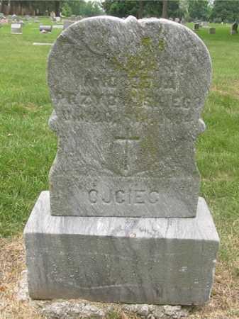 PRZYBYLSKI, ANDRZEJ - Lucas County, Ohio | ANDRZEJ PRZYBYLSKI - Ohio Gravestone Photos