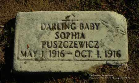 PUSZCZEWICZ, SOPHIA - Lucas County, Ohio | SOPHIA PUSZCZEWICZ - Ohio Gravestone Photos