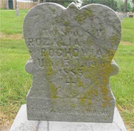 ROCHOWIAK, ROZALIA - Lucas County, Ohio | ROZALIA ROCHOWIAK - Ohio Gravestone Photos