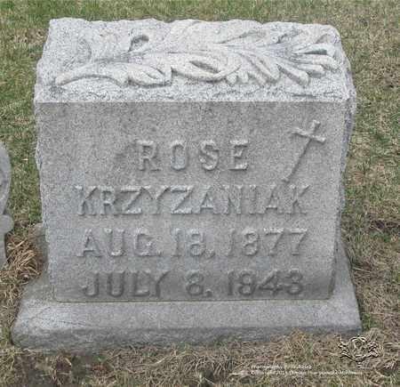 CHUDZINSKI KRZYZANIAK, ROSE - Lucas County, Ohio | ROSE CHUDZINSKI KRZYZANIAK - Ohio Gravestone Photos