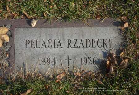 RZADECKI, PELAGIA - Lucas County, Ohio | PELAGIA RZADECKI - Ohio Gravestone Photos