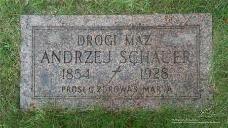 SCHAUER, ANDRZEJ - Lucas County, Ohio | ANDRZEJ SCHAUER - Ohio Gravestone Photos