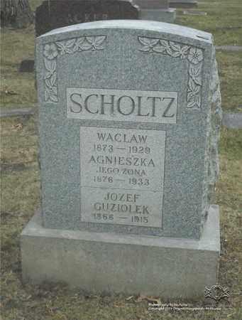 PAWLACZYK GUZIOLEK SCHOLTZ, AGNIESZKA - Lucas County, Ohio | AGNIESZKA PAWLACZYK GUZIOLEK SCHOLTZ - Ohio Gravestone Photos