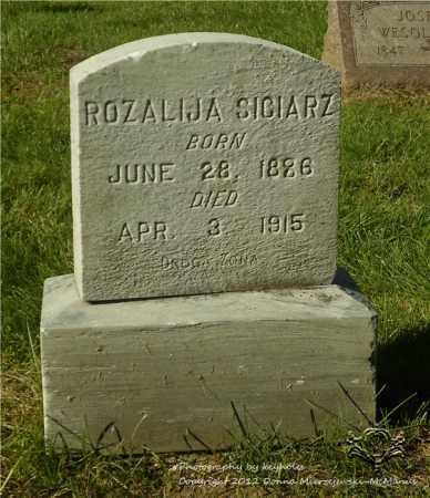 SICIARZ, ROZALIJA - Lucas County, Ohio | ROZALIJA SICIARZ - Ohio Gravestone Photos