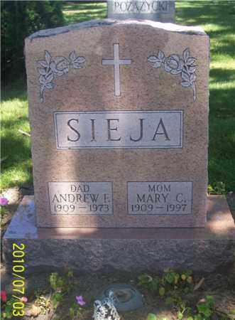 SIEJA, ANDREW F. - Lucas County, Ohio | ANDREW F. SIEJA - Ohio Gravestone Photos