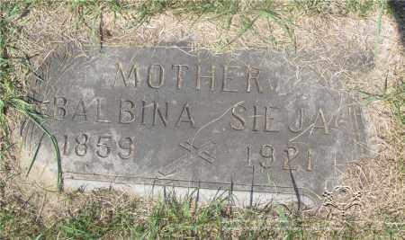 SIEJA, BALBINA - Lucas County, Ohio | BALBINA SIEJA - Ohio Gravestone Photos