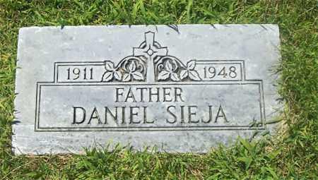 SIEJA, DANIEL - Lucas County, Ohio | DANIEL SIEJA - Ohio Gravestone Photos