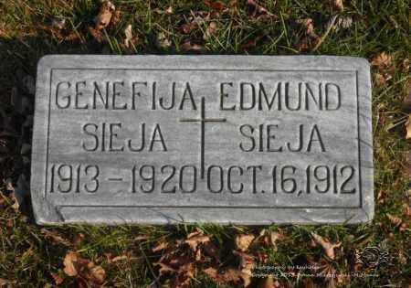 SIEJA, EDMUND - Lucas County, Ohio | EDMUND SIEJA - Ohio Gravestone Photos