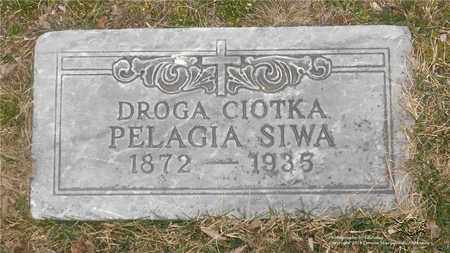 SIWA, PELAGIA - Lucas County, Ohio | PELAGIA SIWA - Ohio Gravestone Photos