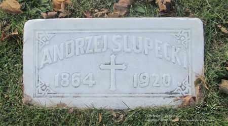 SLUPECKI, ANDRZEJ - Lucas County, Ohio | ANDRZEJ SLUPECKI - Ohio Gravestone Photos