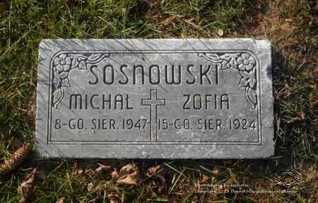 JAWORSKI SOSNOWSKI, ZOFIA - Lucas County, Ohio | ZOFIA JAWORSKI SOSNOWSKI - Ohio Gravestone Photos