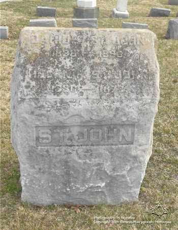 ST. JOHN, HELENA - Lucas County, Ohio | HELENA ST. JOHN - Ohio Gravestone Photos