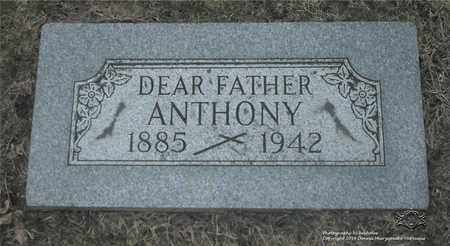 STEFANSKI, ANTHONY - Lucas County, Ohio | ANTHONY STEFANSKI - Ohio Gravestone Photos