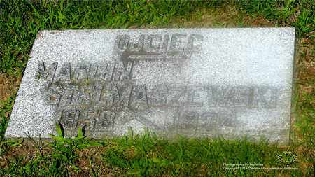STELMASZEWSKI, MARCIN - Lucas County, Ohio | MARCIN STELMASZEWSKI - Ohio Gravestone Photos