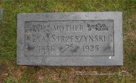 MAJEWSKI STRZESZYNSKI, EVA - Lucas County, Ohio | EVA MAJEWSKI STRZESZYNSKI - Ohio Gravestone Photos