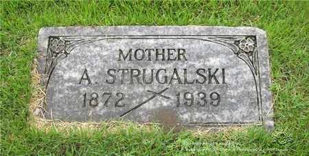 STRUGALSKI, ANTONINA - Lucas County, Ohio | ANTONINA STRUGALSKI - Ohio Gravestone Photos