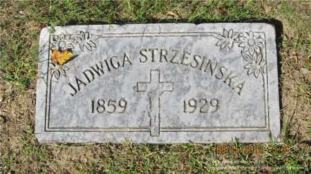 STRZESINSKI, JADWIGA (HEDWIG) - Lucas County, Ohio | JADWIGA (HEDWIG) STRZESINSKI - Ohio Gravestone Photos