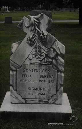 SYNOWCZYK, BERTHA - Lucas County, Ohio | BERTHA SYNOWCZYK - Ohio Gravestone Photos