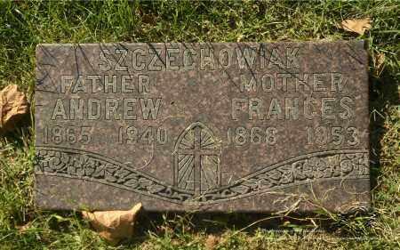 SZCZECHOWIAK, FRANCES - Lucas County, Ohio | FRANCES SZCZECHOWIAK - Ohio Gravestone Photos