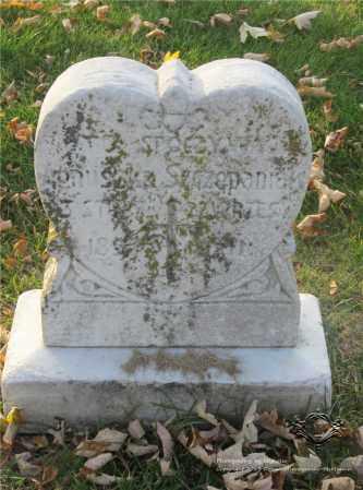 SZCZEPANIAK, AGNUSZKA - Lucas County, Ohio | AGNUSZKA SZCZEPANIAK - Ohio Gravestone Photos
