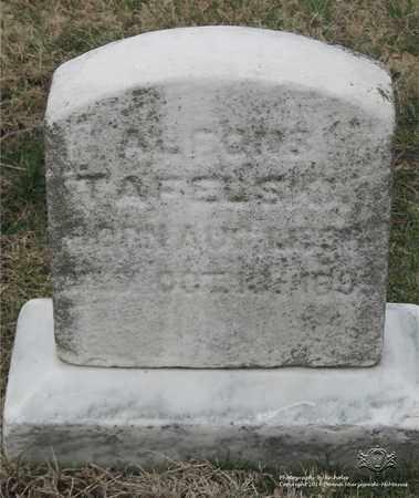 TAFELSKI, ALFONSE - Lucas County, Ohio | ALFONSE TAFELSKI - Ohio Gravestone Photos