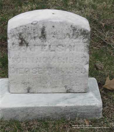 TAFELSKI, WALTER - Lucas County, Ohio | WALTER TAFELSKI - Ohio Gravestone Photos