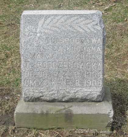 POTRZEBOWSKA, THERESA - Lucas County, Ohio | THERESA POTRZEBOWSKA - Ohio Gravestone Photos
