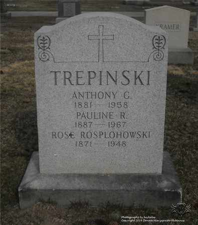TREPINSKI, ANTHONY G. - Lucas County, Ohio | ANTHONY G. TREPINSKI - Ohio Gravestone Photos