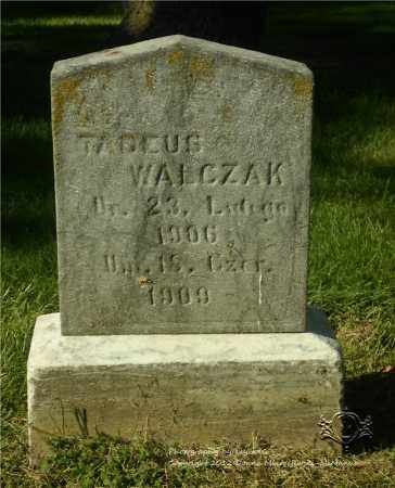 WALCZAK, TADEUS - Lucas County, Ohio | TADEUS WALCZAK - Ohio Gravestone Photos