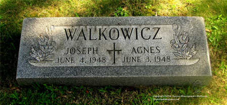 WALKOWICZ, AGNES - Lucas County, Ohio | AGNES WALKOWICZ - Ohio Gravestone Photos