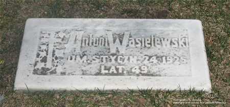 WASIELEWSKI, ANTONI - Lucas County, Ohio | ANTONI WASIELEWSKI - Ohio Gravestone Photos