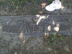 WEBB, ALPHUS, EUGENE - Lucas County, Ohio | ALPHUS, EUGENE WEBB - Ohio Gravestone Photos