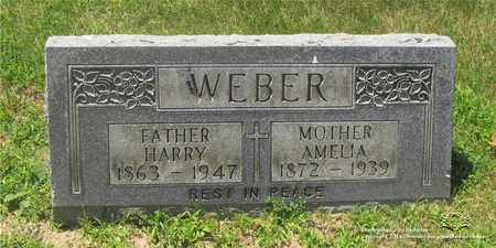 WOODKE WEBER, AMELIA - Lucas County, Ohio | AMELIA WOODKE WEBER - Ohio Gravestone Photos