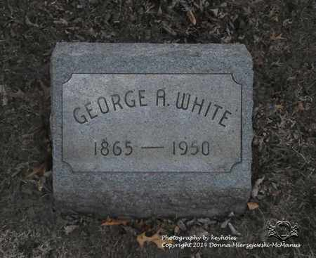 WHITE, GEORGE A. - Lucas County, Ohio | GEORGE A. WHITE - Ohio Gravestone Photos