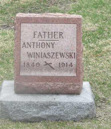 WINIASZEWSKI, ANTHONY - Lucas County, Ohio | ANTHONY WINIASZEWSKI - Ohio Gravestone Photos