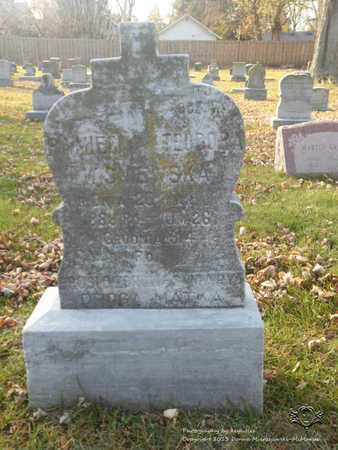 WISNIEWSKA, TEODORA - Lucas County, Ohio | TEODORA WISNIEWSKA - Ohio Gravestone Photos