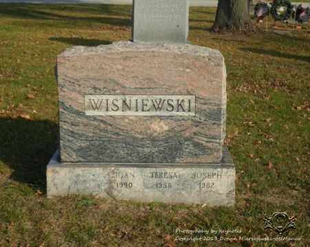 WISNIEWSKI, JOAN - Lucas County, Ohio | JOAN WISNIEWSKI - Ohio Gravestone Photos