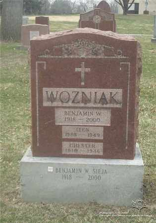 WOZNIAK, CHESTER - Lucas County, Ohio | CHESTER WOZNIAK - Ohio Gravestone Photos