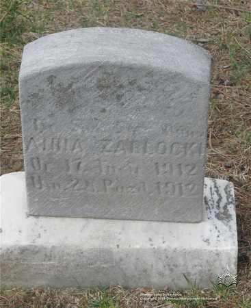 ZABLOWSKI, ANNA - Lucas County, Ohio | ANNA ZABLOWSKI - Ohio Gravestone Photos