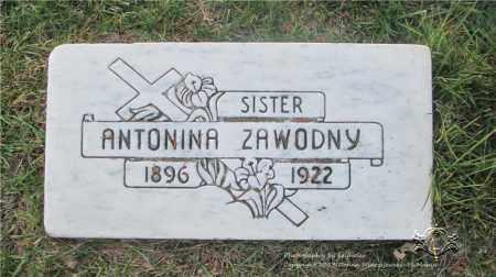 ZAWODNY, ANTONINA - Lucas County, Ohio | ANTONINA ZAWODNY - Ohio Gravestone Photos