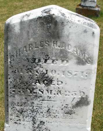 ADAMS, CHARLES H. - Madison County, Ohio | CHARLES H. ADAMS - Ohio Gravestone Photos