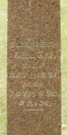 ALLEN, ELIZABETH - Madison County, Ohio | ELIZABETH ALLEN - Ohio Gravestone Photos