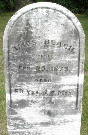 BEACH, AMOS - Madison County, Ohio | AMOS BEACH - Ohio Gravestone Photos